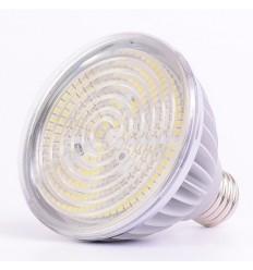 NN-LED žárovka PAR E27, 240V, 15W, 900lm, NW