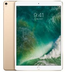 iPad Pro Wi-Fi 512GB - Gold