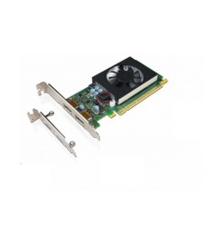 Lenovo GeForce GT730 2GB Dual DP HP and LP Graphics Card